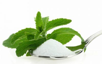 Preparación de la Stevia en hojas